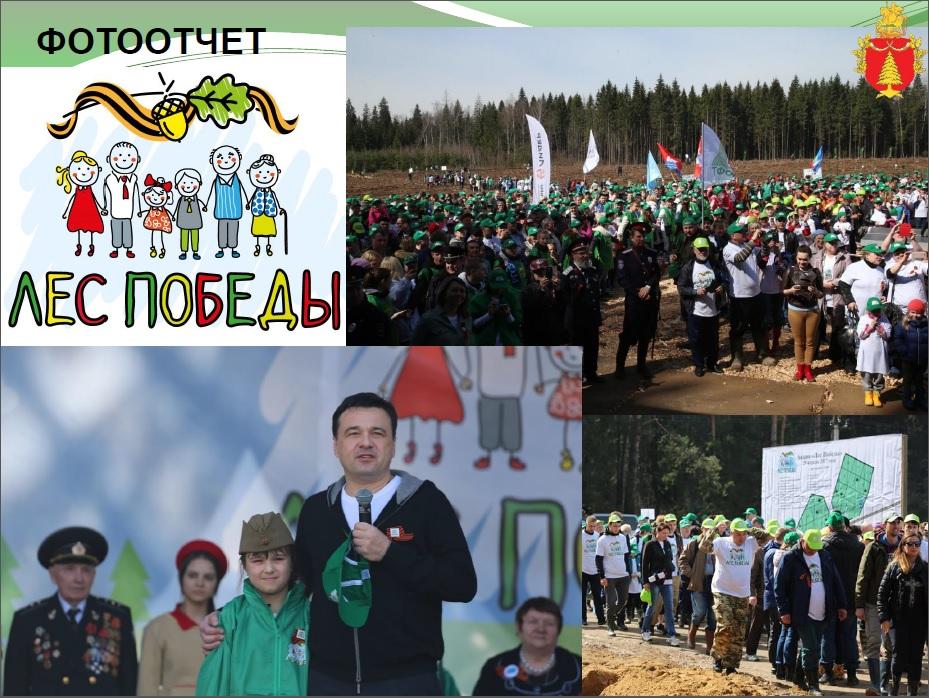 лес победы