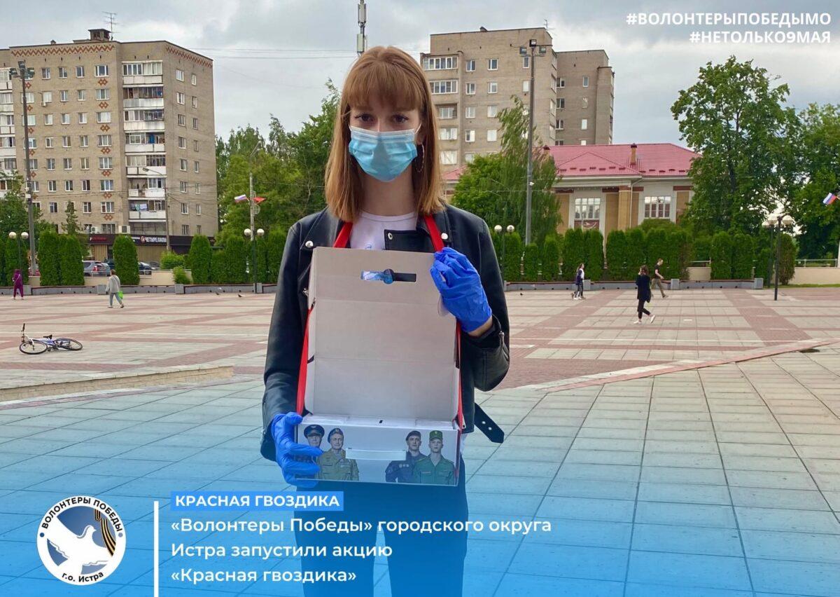 «Волонтёры Победы» городского округа Истра запустили акцию «Красная гвоздика».
